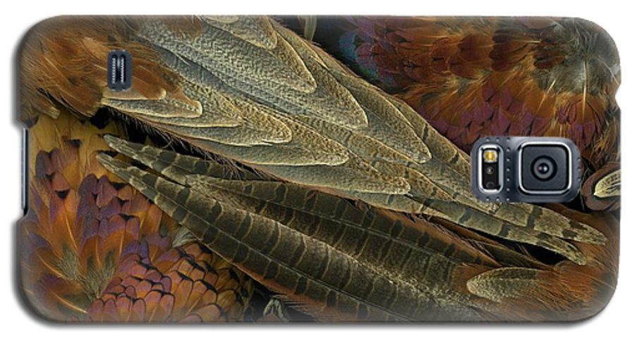 Pheasant Galaxy S5 Case featuring the photograph Featherdance by Christian Slanec