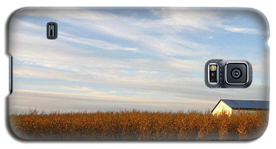 Country Galaxy S5 Case featuring the photograph Fields Of Gold by Rhonda Barrett