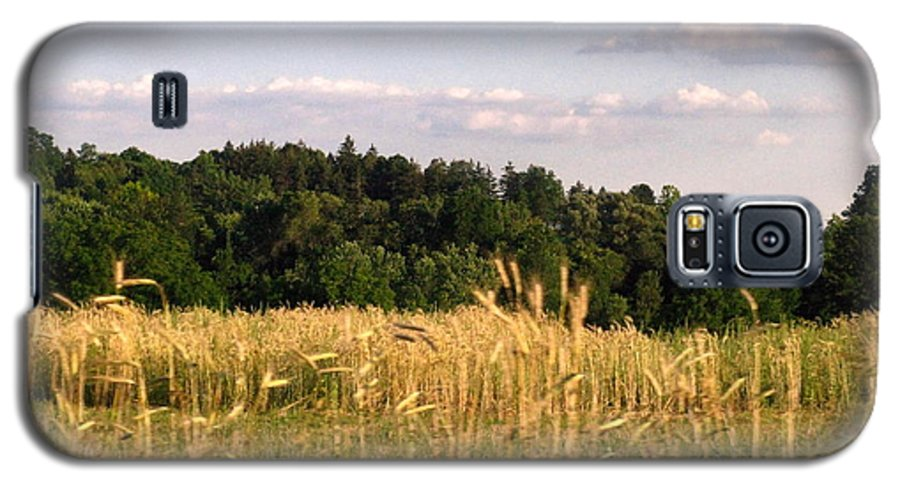Field Galaxy S5 Case featuring the photograph Fields Of Grain by Rhonda Barrett