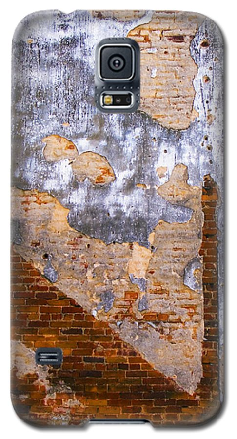 Architecture Galaxy S5 Case featuring the photograph Finger Food by Skip Hunt
