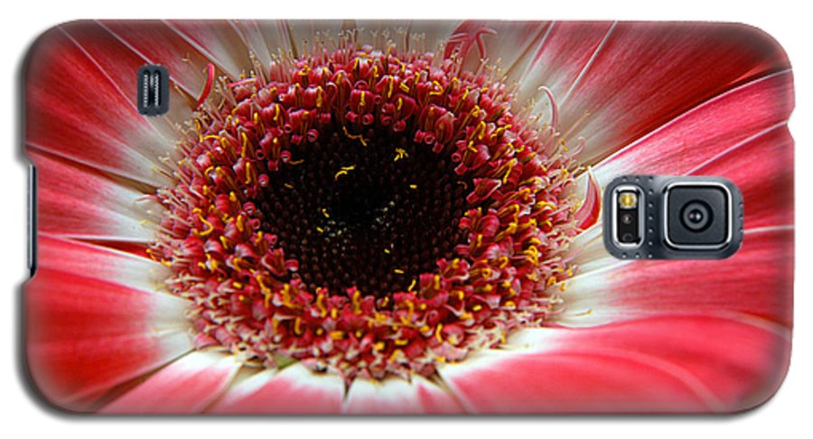 Clay Galaxy S5 Case featuring the photograph Floral by Clayton Bruster