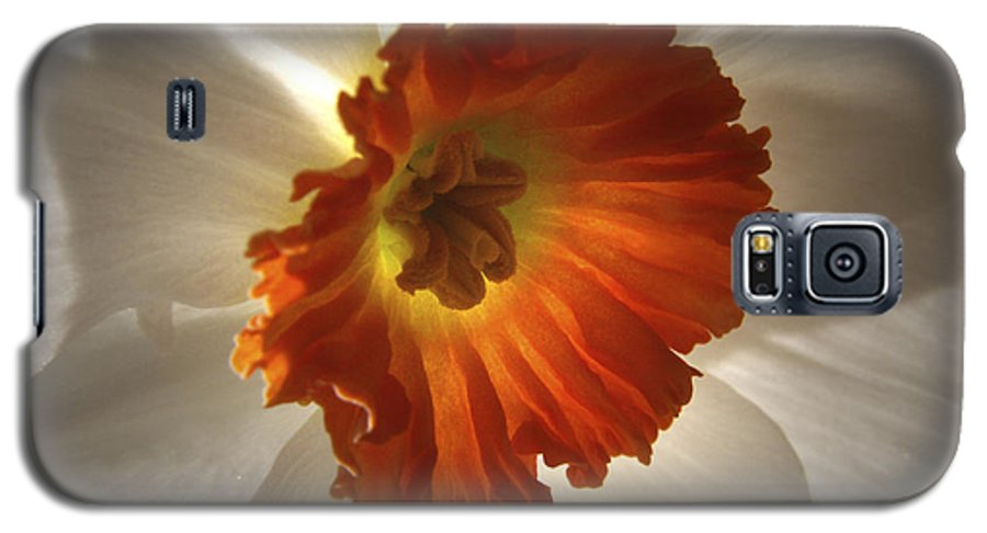 Flowers Galaxy S5 Case featuring the photograph Flower Narcissus by Nancy Griswold