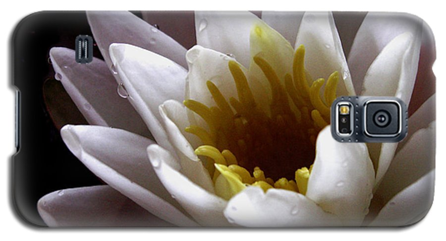 Flowers Galaxy S5 Case featuring the photograph Flower Waterlily by Nancy Griswold