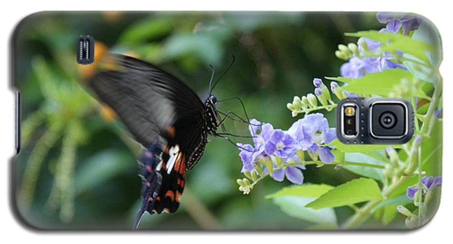 Butterfly Galaxy S5 Case featuring the photograph Fly In Butterfly by Shelley Jones