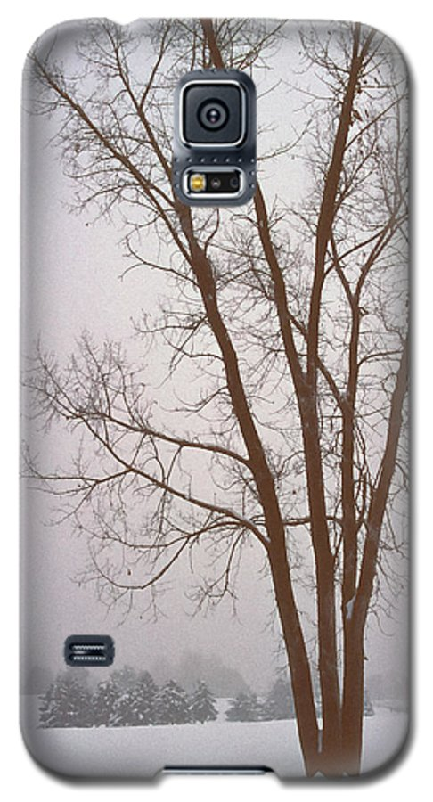 Nature Galaxy S5 Case featuring the photograph Foggy Morning Landscape 13 by Steve Ohlsen