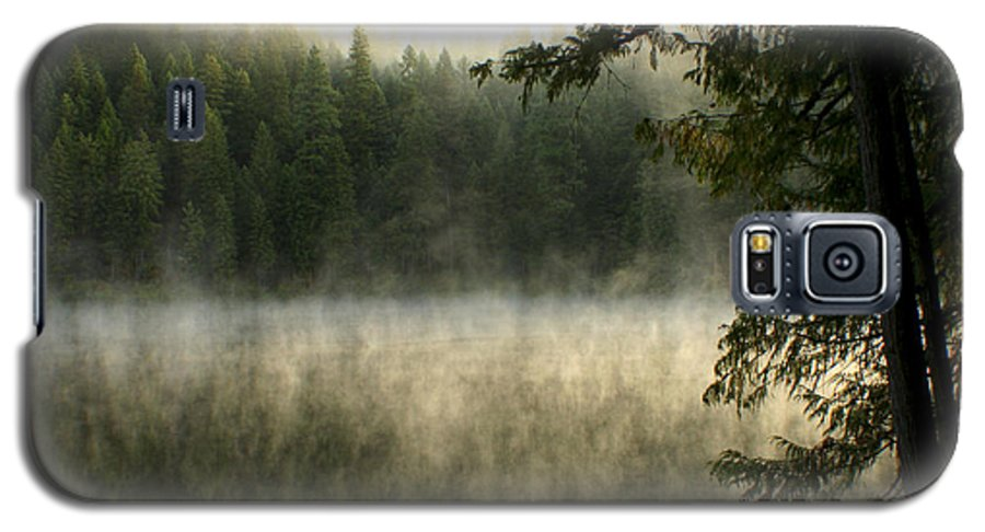 Fog Galaxy S5 Case featuring the photograph Forest And Fog by Idaho Scenic Images Linda Lantzy
