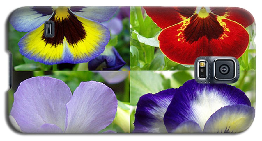 Pansy Galaxy S5 Case featuring the photograph Four Pansies by Nancy Mueller