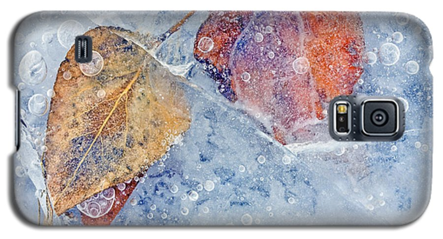 Ice Galaxy S5 Case featuring the photograph Fractured Seasons by Mike Dawson