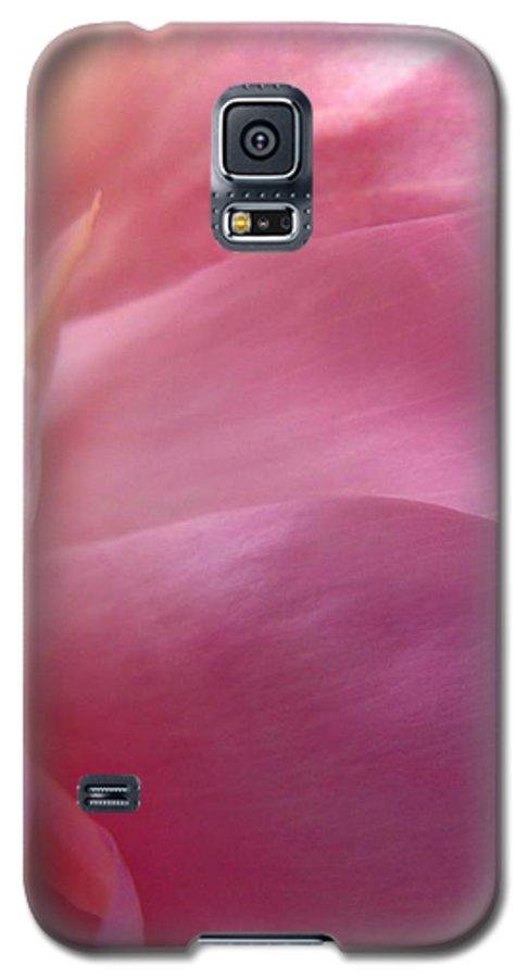 Flower Galaxy S5 Case featuring the photograph Fragment by Rhonda Barrett