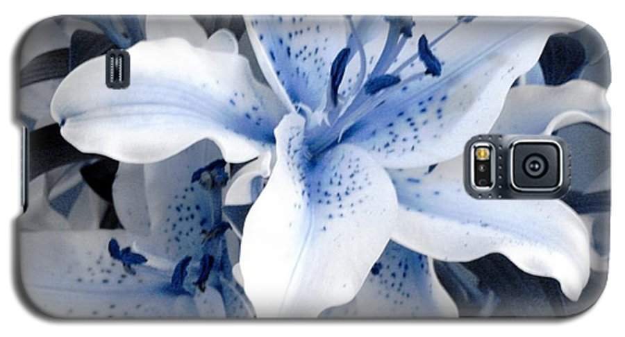 Blue Galaxy S5 Case featuring the photograph Freeze by Shelley Jones