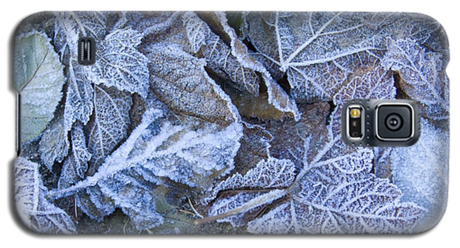 Frost Galaxy S5 Case featuring the photograph Frost by Idaho Scenic Images Linda Lantzy
