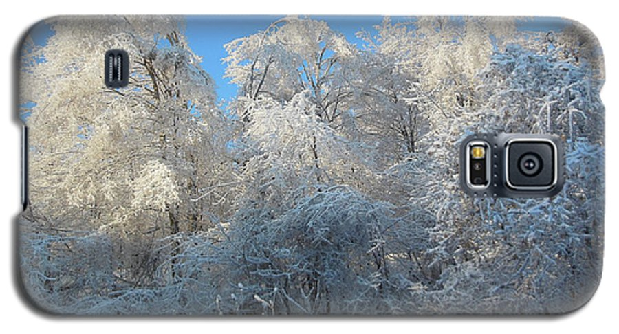 Frosty Galaxy S5 Case featuring the photograph Frosty Trees by Rockin Docks Deluxephotos