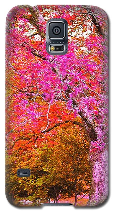 Fuschia Galaxy S5 Case featuring the photograph Fuschia Tree by Nadine Rippelmeyer