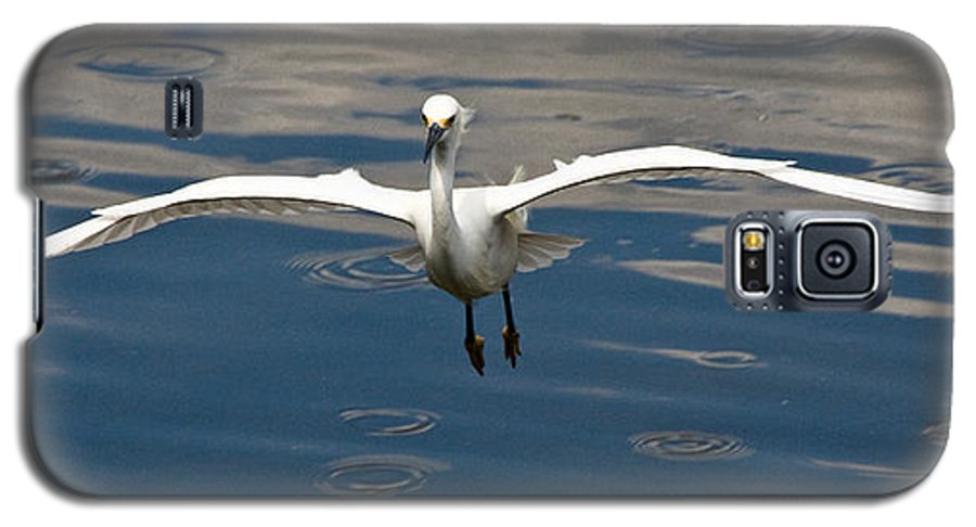 Snowy Egret Galaxy S5 Case featuring the photograph Gear Down by Christopher Holmes