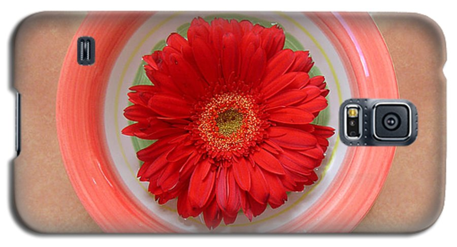 Nature Galaxy S5 Case featuring the photograph Gerbera Daisy - Bowled On Tile by Lucyna A M Green