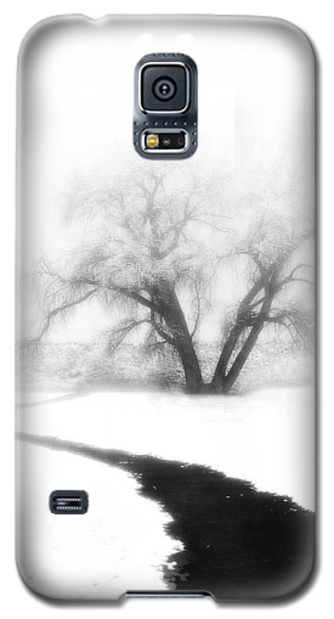 Tree Galaxy S5 Case featuring the photograph Getting There by Marilyn Hunt