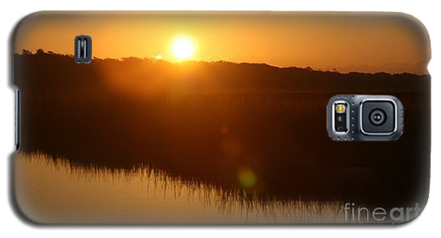 Glow Galaxy S5 Case featuring the photograph Gold Morning by Nadine Rippelmeyer