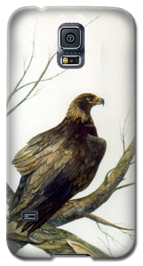 Eagle Galaxy S5 Case featuring the painting Golden Eagle by Ben Kiger