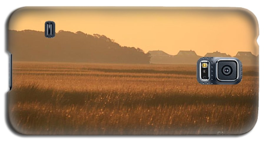 Marsh Galaxy S5 Case featuring the photograph Golden Marshes by Nadine Rippelmeyer
