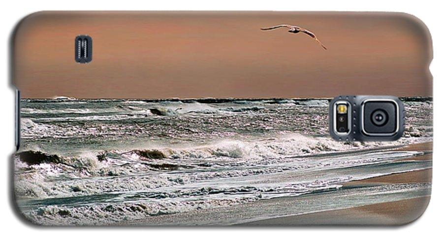Seascape Galaxy S5 Case featuring the photograph Golden Shore by Steve Karol