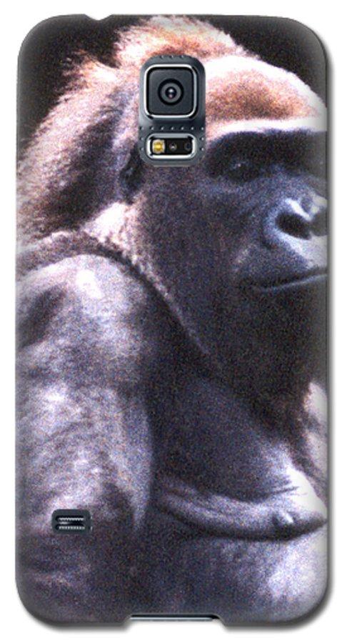 Gorilla Galaxy S5 Case featuring the photograph Gorilla by Steve Karol
