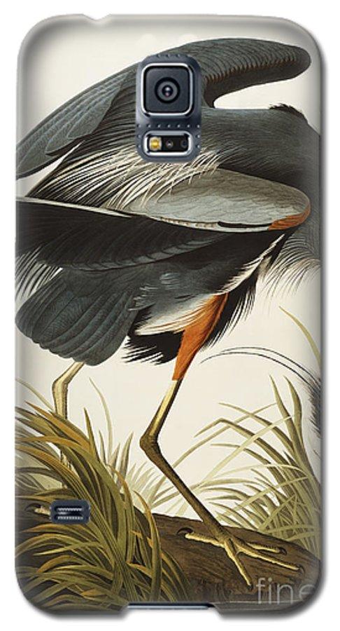 Great Blue Heron (ardea Herodias) Plate Ccxi From 'the Birds Of America' (aquatint & Engraving With Hand-colouring) By John James Audubon (1785-1851) Galaxy S5 Case featuring the drawing Great Blue Heron by John James Audubon