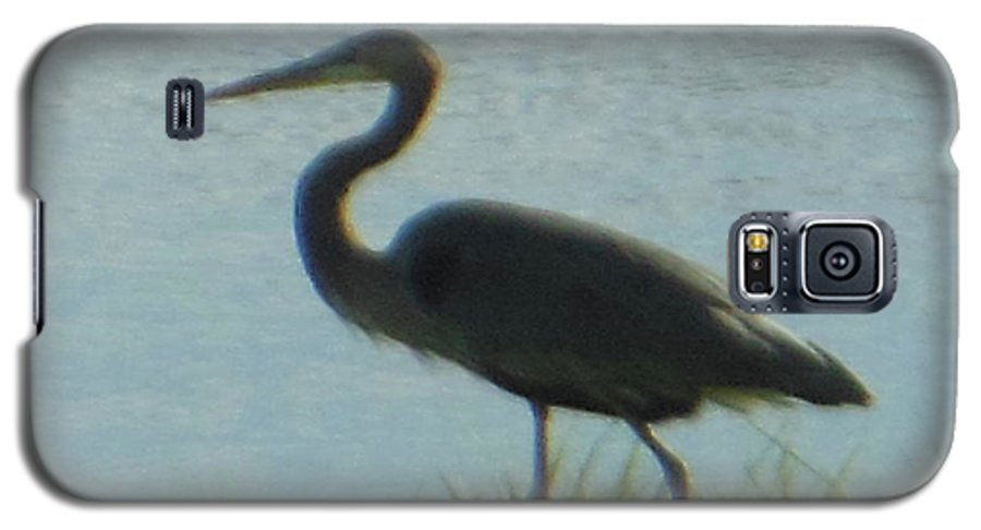 Great Blue Heron Galaxy S5 Case featuring the photograph Great Blue Heron by Rockin Docks Deluxephotos