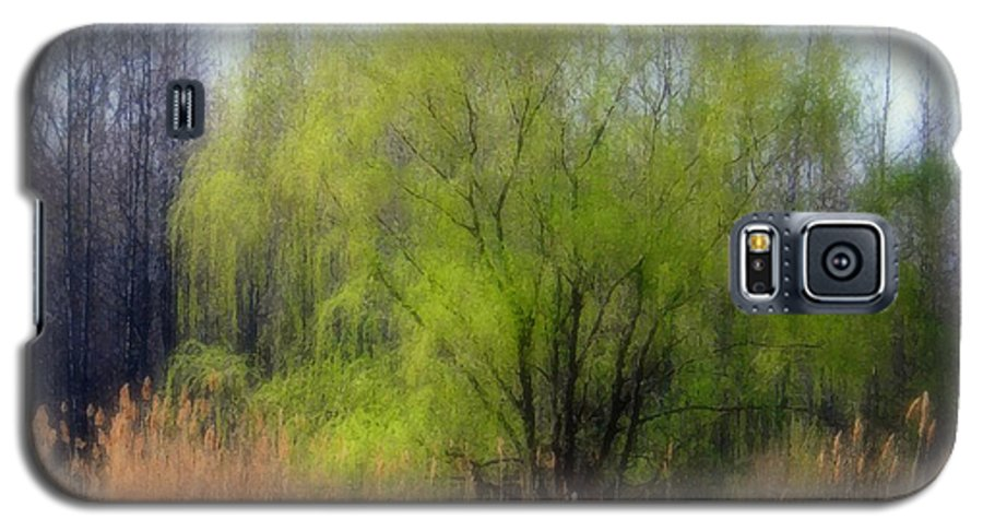 Scenic Art Galaxy S5 Case featuring the photograph Green Tree by Linda Sannuti
