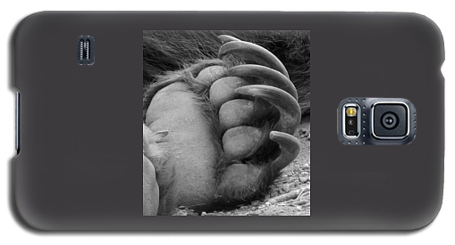 Grizzly Bear Galaxy S5 Case featuring the photograph Grizzly Claws by Tiffany Vest