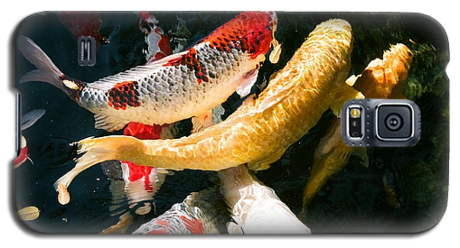 Fish Galaxy S5 Case featuring the photograph Group Of Koi Fish by Dean Triolo