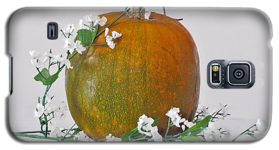 Photography Galaxy S5 Case featuring the photograph Harvest by Shelley Jones