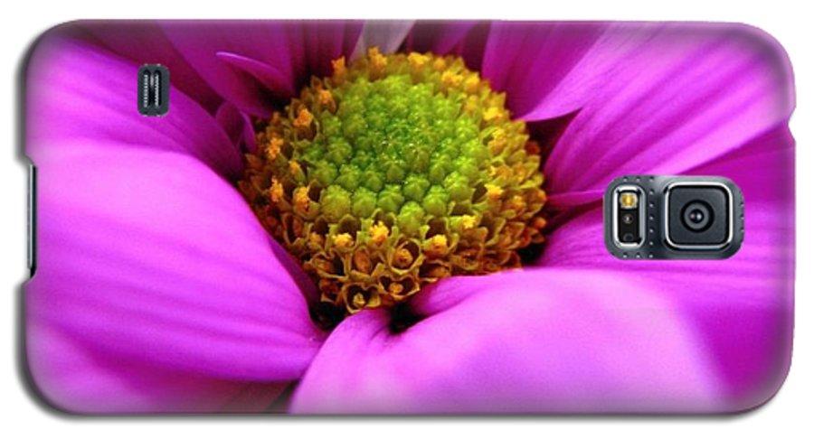 Flower Galaxy S5 Case featuring the photograph Hidden Inside by Rhonda Barrett