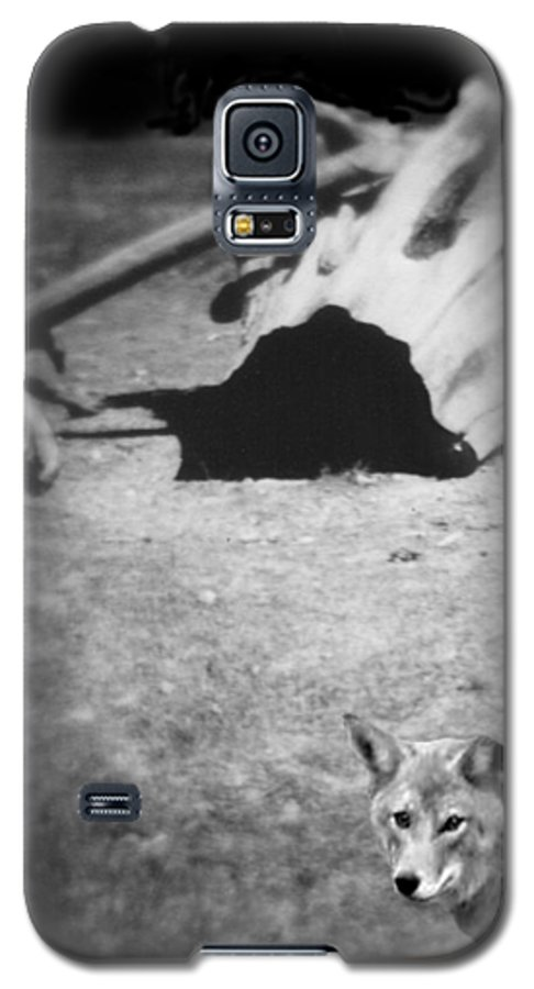 Yosemite Galaxy S5 Case featuring the photograph Homage To Josef Beuys by Ann Tracy
