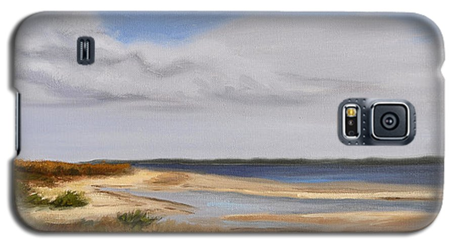 Landscape Galaxy S5 Case featuring the painting Honeymoon Island by Greg Neal
