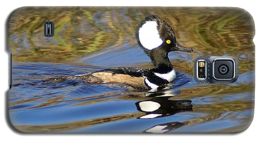 Duck Galaxy S5 Case featuring the photograph Hooded Mersanger by Debbie May
