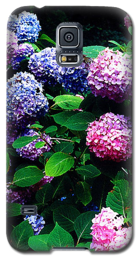 Flowers Galaxy S5 Case featuring the photograph Hydrangeas by Nancy Mueller