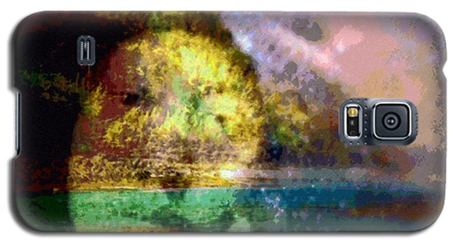 Tropical Interior Design Galaxy S5 Case featuring the photograph I Ini O Ka Naau by Kenneth Grzesik