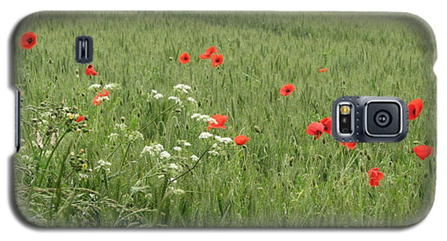 Lest-we Forget Galaxy S5 Case featuring the photograph in Flanders Fields the poppies blow by Mary Ellen Mueller Legault