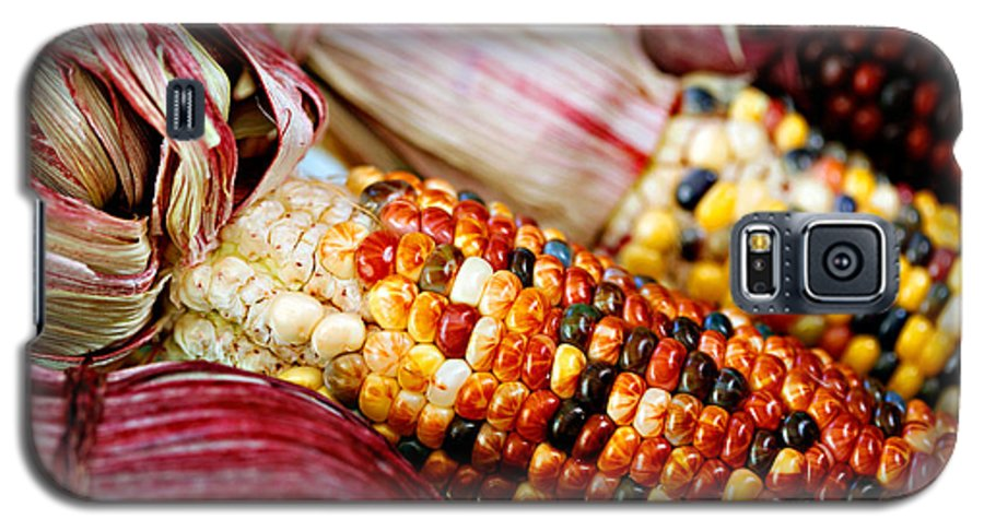 Corn Galaxy S5 Case featuring the photograph Indian Corn by Marilyn Hunt