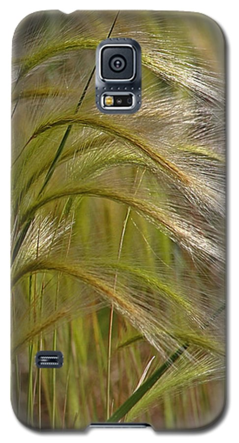 Grass Galaxy S5 Case featuring the photograph Indiangrass Swaying Softly With The Wind by Christine Till