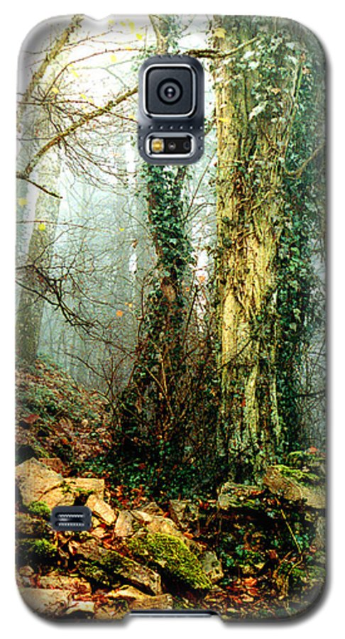 Ivy Galaxy S5 Case featuring the photograph Ivy In The Woods by Nancy Mueller