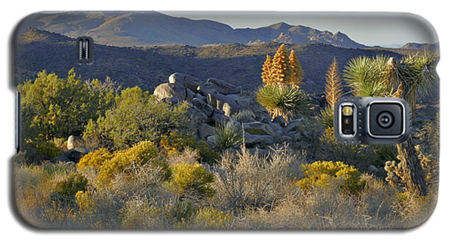 Sunset Galaxy S5 Case featuring the photograph Joshua Tree National Park In California by Christine Till