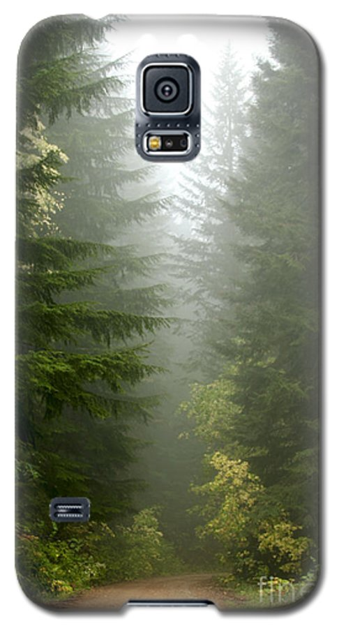 Forest Galaxy S5 Case featuring the photograph Journey Through The Fog by Idaho Scenic Images Linda Lantzy