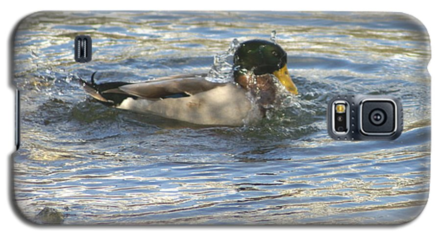 Ducks Galaxy S5 Case featuring the photograph Just Ducking Around by Debbie May