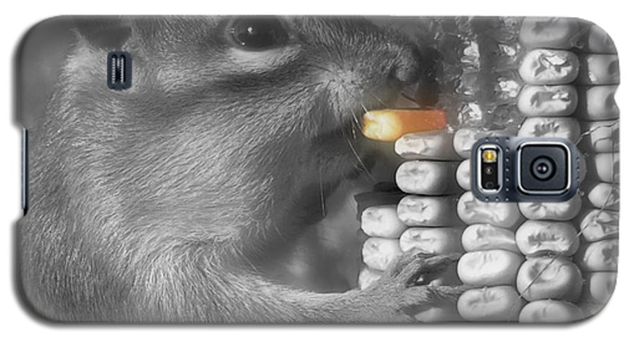 Chipmunk Galaxy S5 Case featuring the photograph Just One More Bite by Kenneth Krolikowski