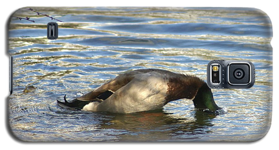 Duck Galaxy S5 Case featuring the photograph Just One More Peek by Debbie May