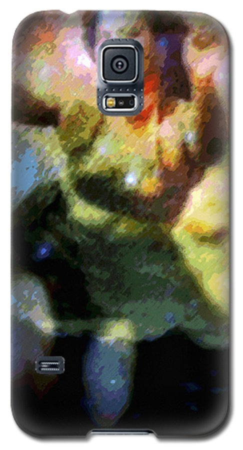 Tropical Interior Design Galaxy S5 Case featuring the photograph Ke'e Hula Uhane by Kenneth Grzesik