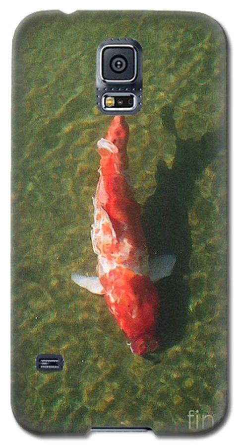 Koi Galaxy S5 Case featuring the photograph Koi by Dean Triolo