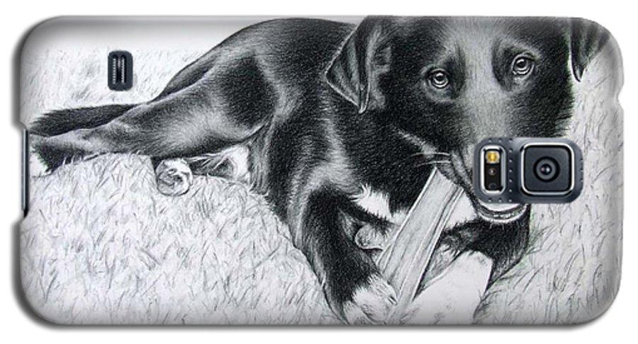Dog Galaxy S5 Case featuring the drawing Labrador Samy by Nicole Zeug
