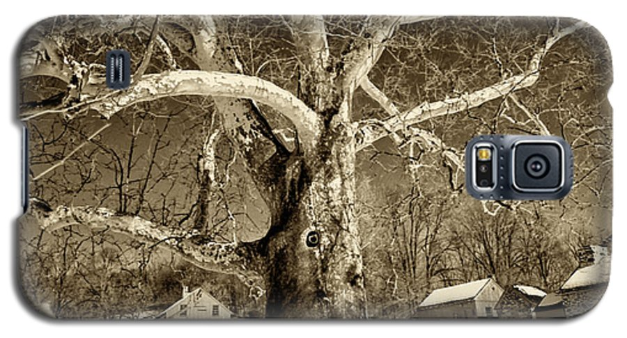 Sycamore Tree Galaxy S5 Case featuring the photograph Lafayette Headquarters by Jack Paolini